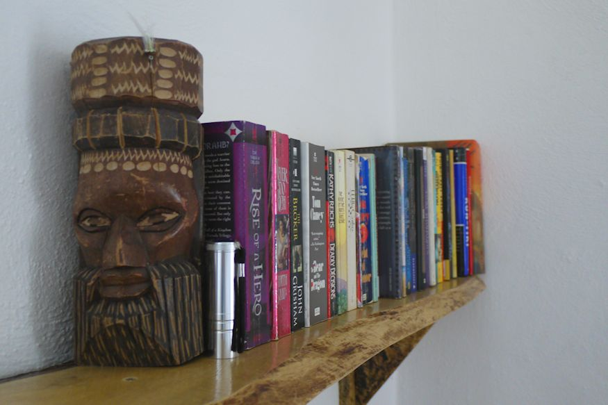 bookshelf in Acocote