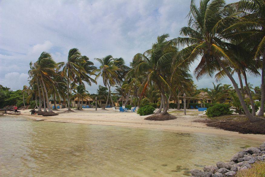 Beach at Costa de Cocos