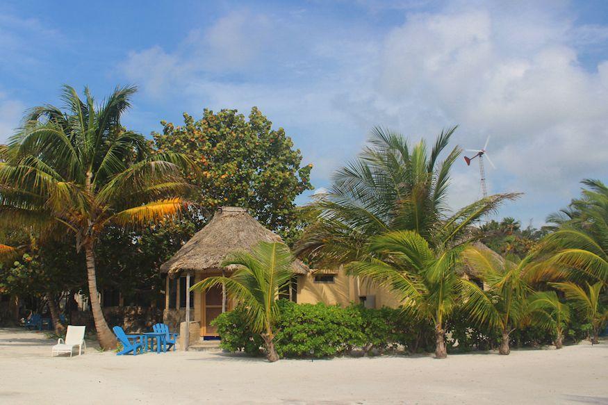 Resort Huts and Palms Costa de Cocos