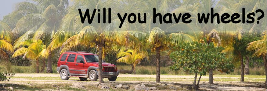 Will you have wheels car in palms