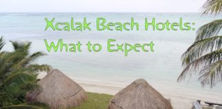 Xcalak Beach Hotels: What to Expect image on the beach