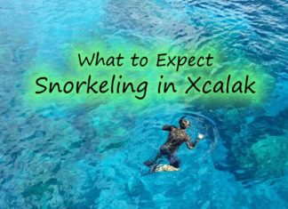 snorkeling in Xcalak