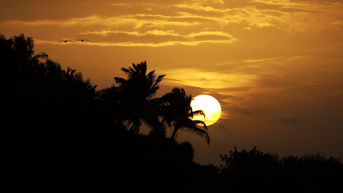 Xcalak Sunrise with birds
