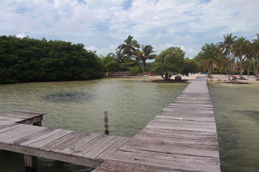 Dock and coconut palms at Costa de Cocos