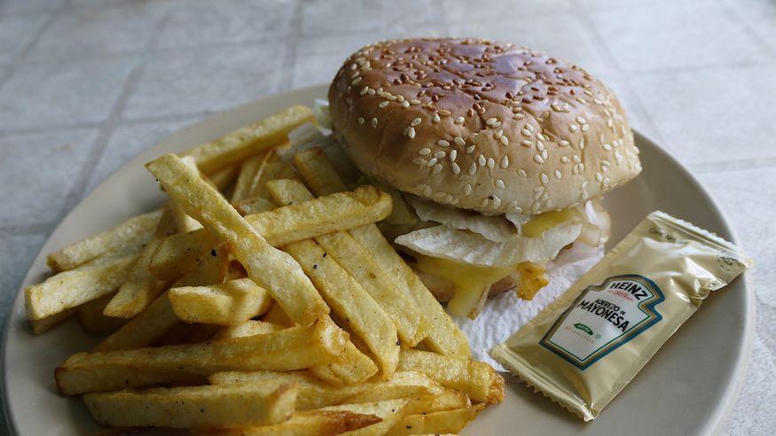Tobys fish burger and mayo