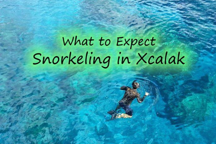 snorkeling in Xcalak