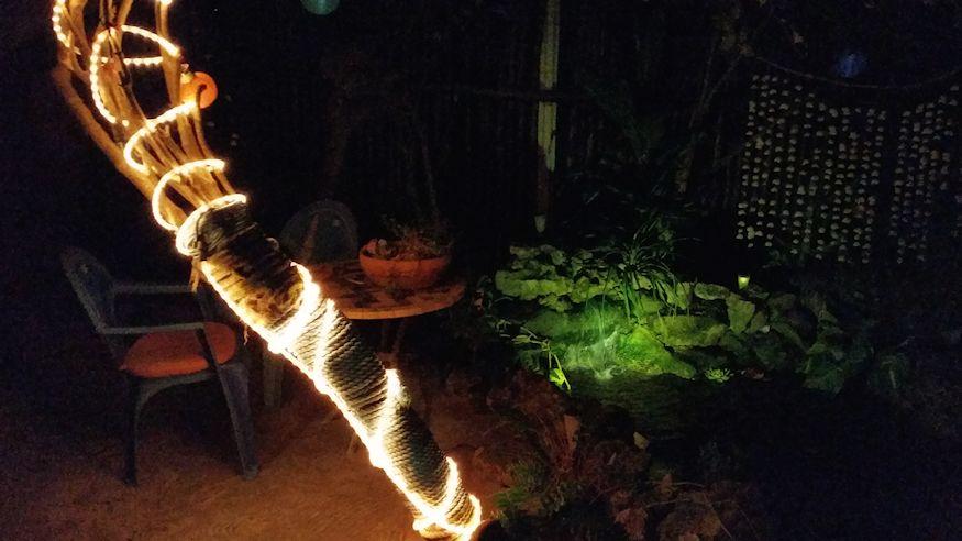 Xcalak Leaky Palapa Garden