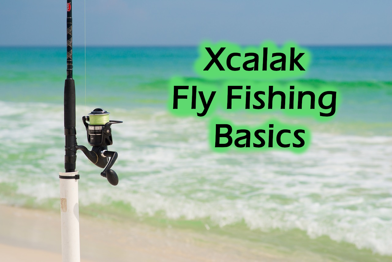 A fishing rod stuck upright on a sandy beach with turquoise water - Xcalak fly fishing basics featured image